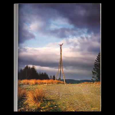 """Horned Tripod"", David Nash, 1977, Grizedale"